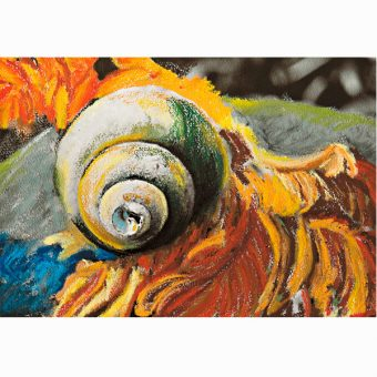 Cedar and Shell Pastel Painting_SHOP