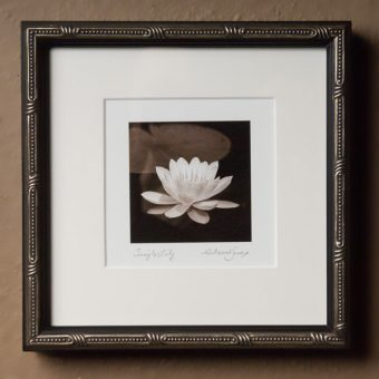 Tiny Framed Photography