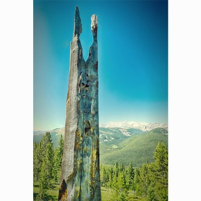 13_holy-cross-wilderness-co-trail_shop