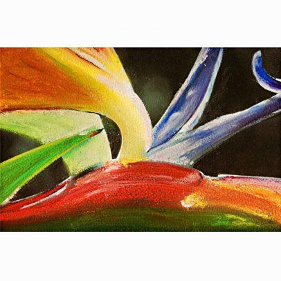 Bird of Paradise Pastel Painting_SHOP