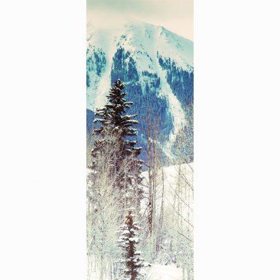 telluride-winter-bliss-panorama-card_shop