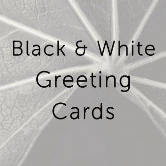 B&W Greeting Cards
